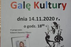 Gala Kultury 2020