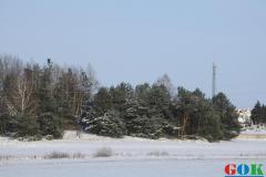Janów Podlaski w zimowej scenerii.